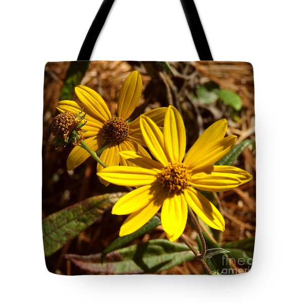 Cosmos Flower Tote Bag by Andrea Anderegg