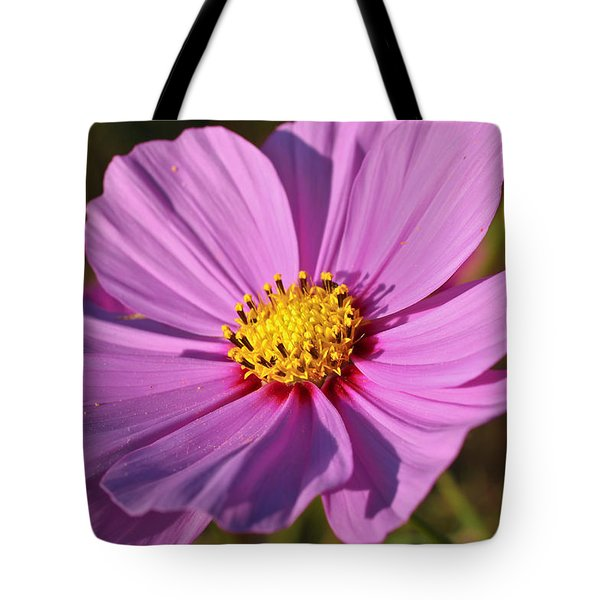 Cosmos Love Tote Bag