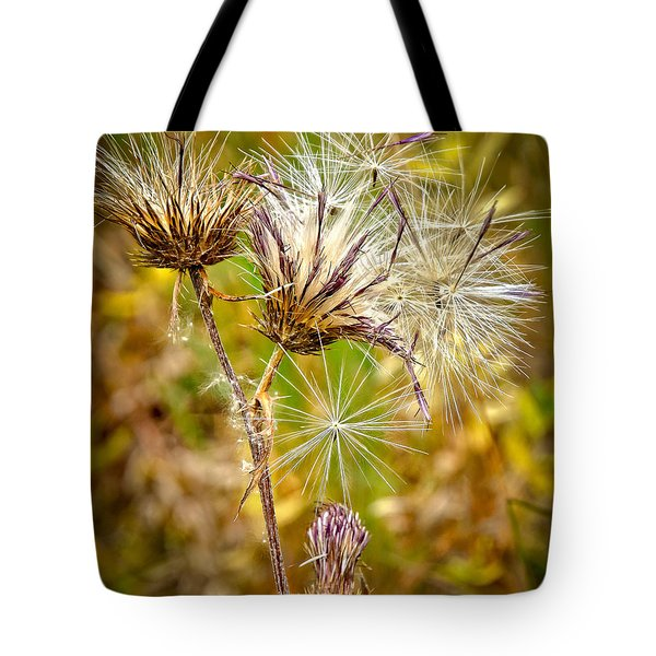 Tote Bag featuring the photograph Cotten Grass by Jim Thompson