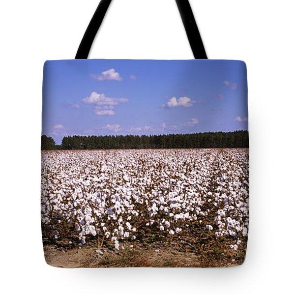 Cotton Crops In A Field, Georgia, Usa Tote Bag