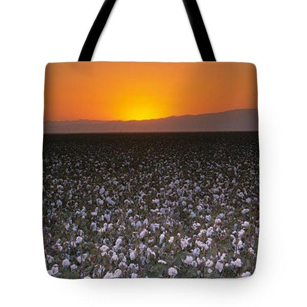 Cotton Crops In A Field, San Joaquin Tote Bag