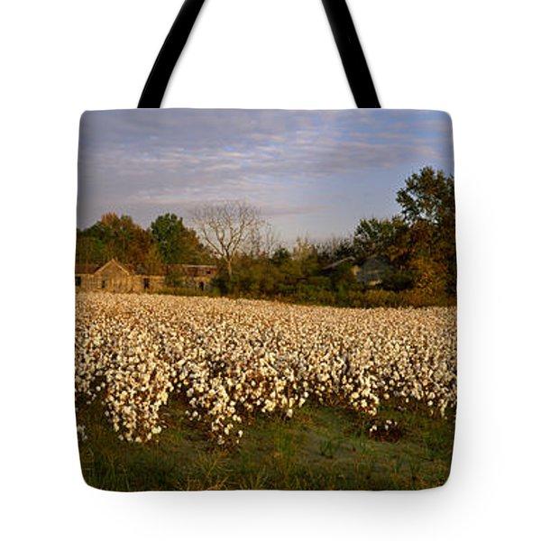Cotton Plants In A Field, North Tote Bag