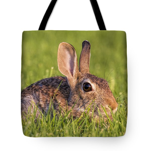 Tote Bag featuring the photograph Cottontail by Rob Graham