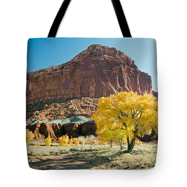 Cottonwoods In Fall The Castlecapitol Reef National Park Tote Bag