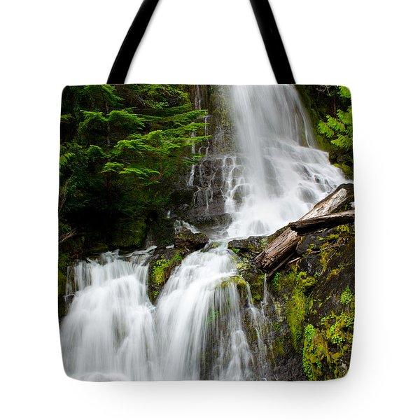Cougar Falls Tote Bag