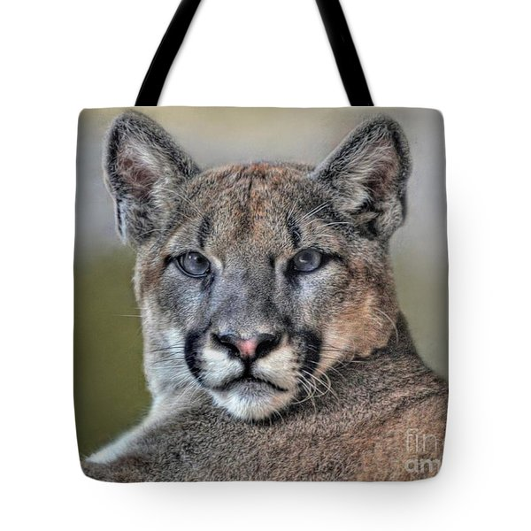 Tote Bag featuring the photograph Cougar  by Savannah Gibbs