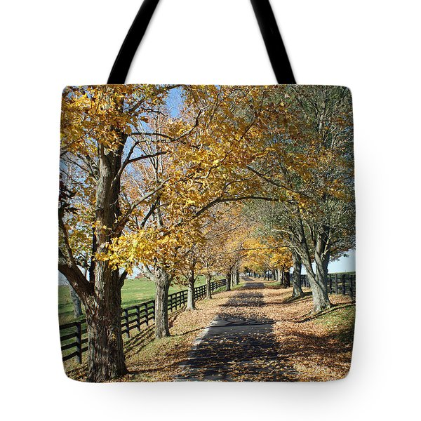 Country Lane Tote Bag by Roger Potts