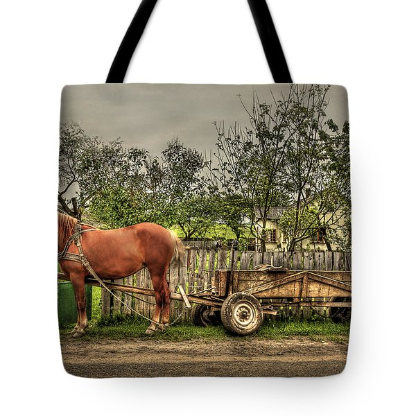 Country Life Tote Bag by Evelina Kremsdorf