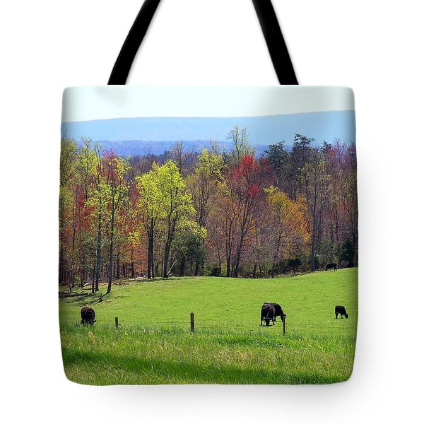 Tote Bag featuring the photograph Countryside In Spring by Kathryn Meyer