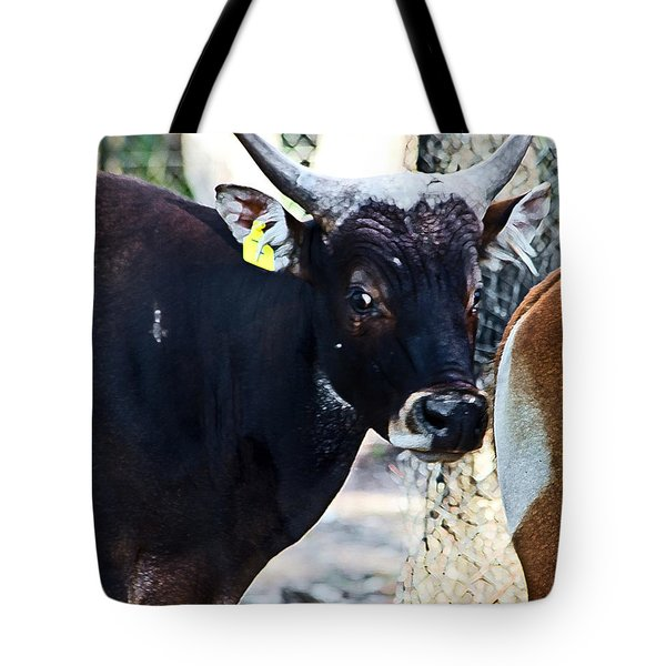 Court Out Tote Bag
