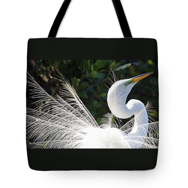 Tote Bag featuring the photograph Courting Dance by Mary Lou Chmura