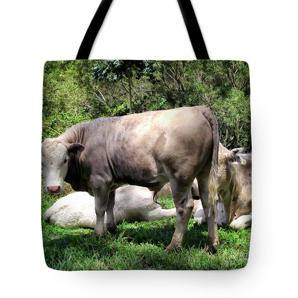 Tote Bag featuring the photograph Cow 5 by Dawn Eshelman