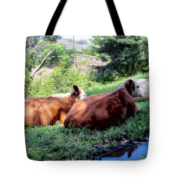 Tote Bag featuring the photograph Cow 6 by Dawn Eshelman