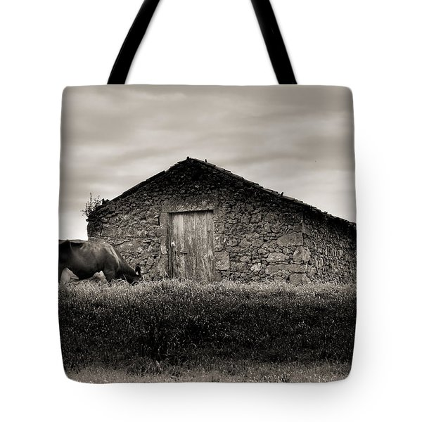 Cow Grazes At Rustic Barn  Tote Bag