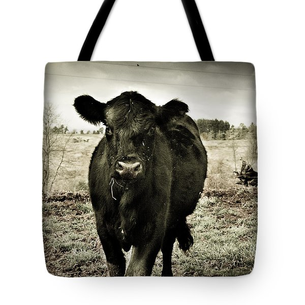 Cow In The Winter Pasture  Tote Bag