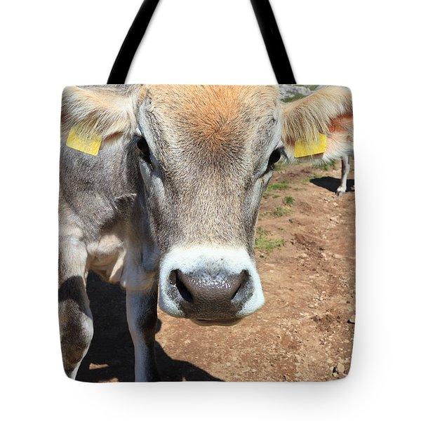 Cow On Alpine Pasture Tote Bag by Antonio Scarpi