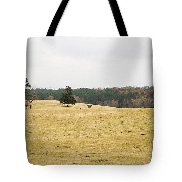 Cow Pasture 2 Tote Bag