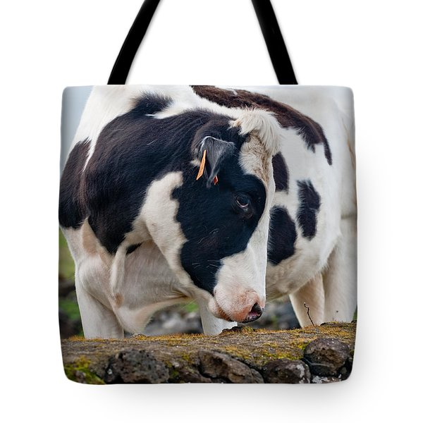 Cow With Head Turned Tote Bag