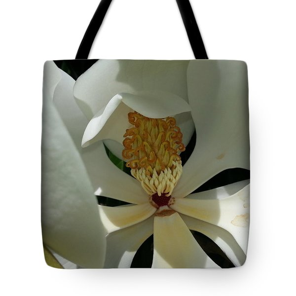 Tote Bag featuring the photograph Coy Magnolia by Caryl J Bohn