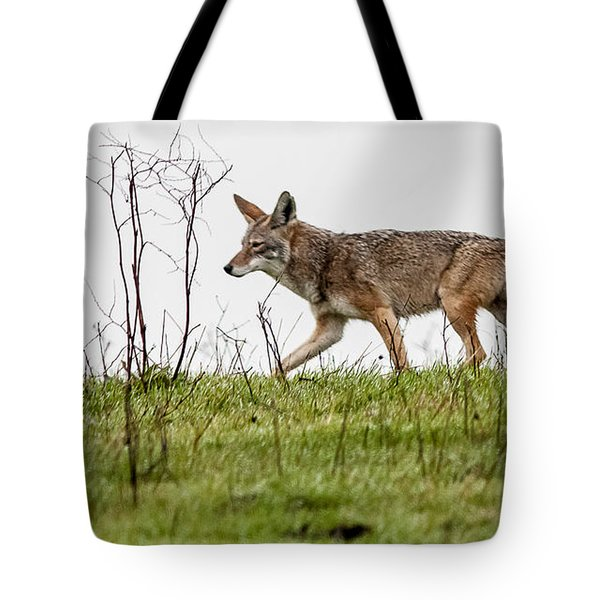Tote Bag featuring the photograph Coyote by Brian Williamson
