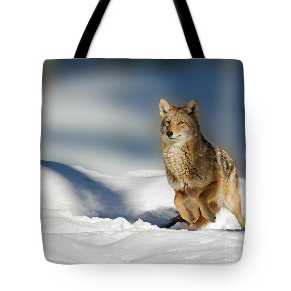 Coyote Go Go Go Tote Bag