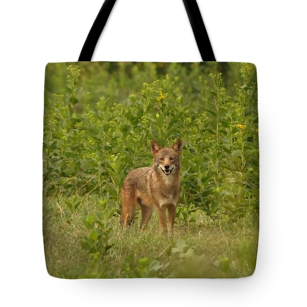 Coyote Happy Tote Bag by Eric Liller