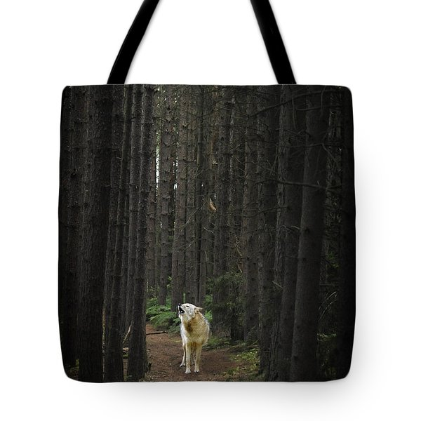 Coyote Howling In Woods Tote Bag by Dan Friend