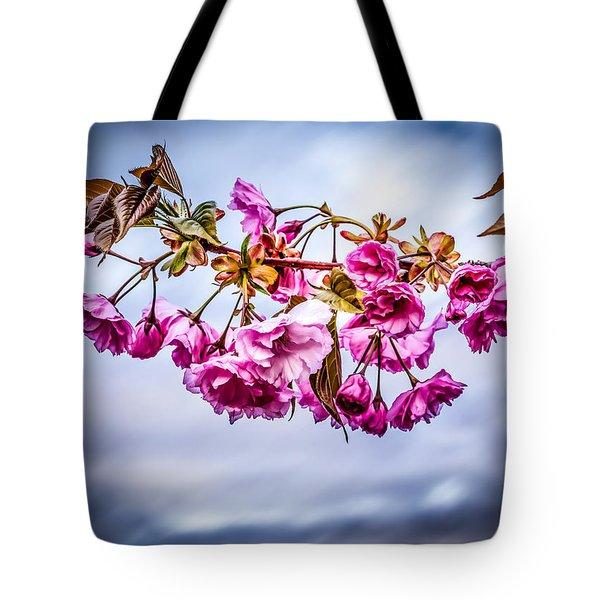 Crab Apple Tree Tote Bag by Bob Orsillo