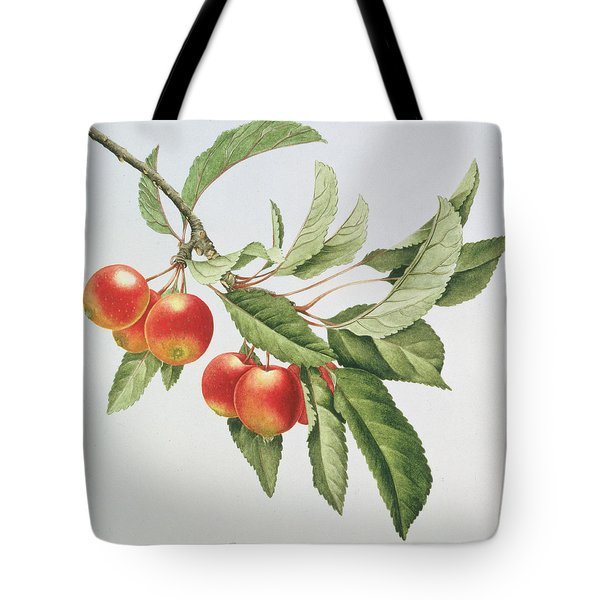 Crab Apples Tote Bag by Sally Crosthwaite