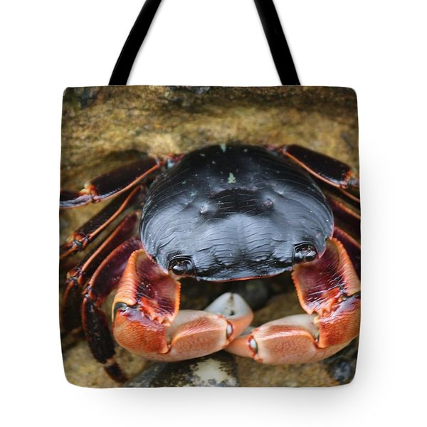 Crabby Pants  Tote Bag