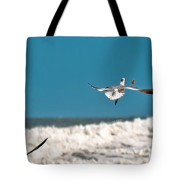 Tote Bag featuring the photograph Cracker Tracker by DigiArt Diaries by Vicky B Fuller