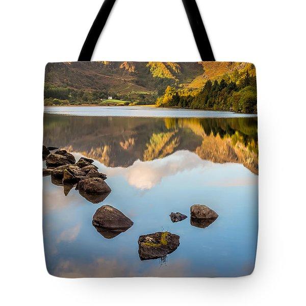 Crafnant Rocks Tote Bag by Adrian Evans