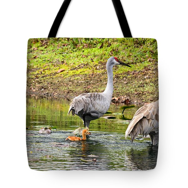 Crane Family Swim II Tote Bag