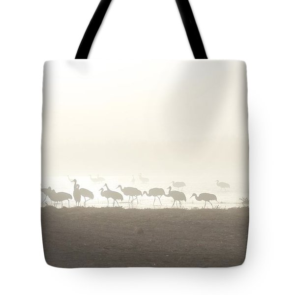 Tote Bag featuring the photograph Cranes In The Mist by Ruth Jolly