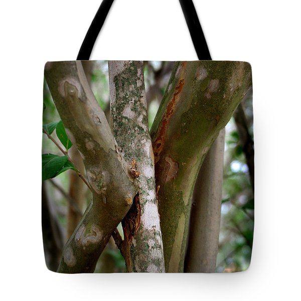 Tote Bag featuring the photograph Crape Myrtle Branches by Peter Piatt