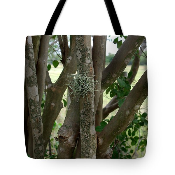 Tote Bag featuring the photograph Crape Myrtle Growth Ball by Peter Piatt