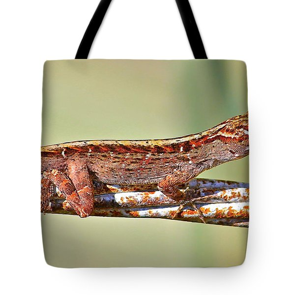 Tote Bag featuring the photograph Crawling Lizard by Cyril Maza