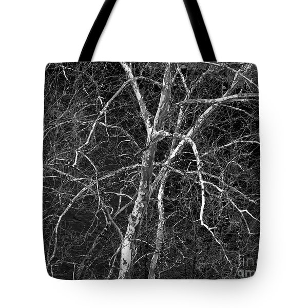 Tote Bag featuring the photograph Crazy Camouflage Tree by Kristen Fox