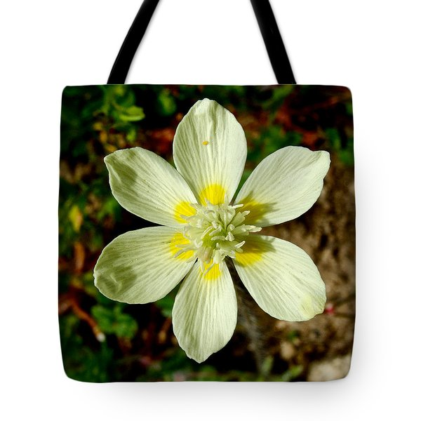 Cream Cup In Park Sierra-ca Tote Bag by Ruth Hager