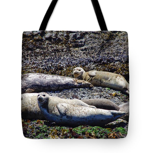 Creatures Comfortable Tote Bag