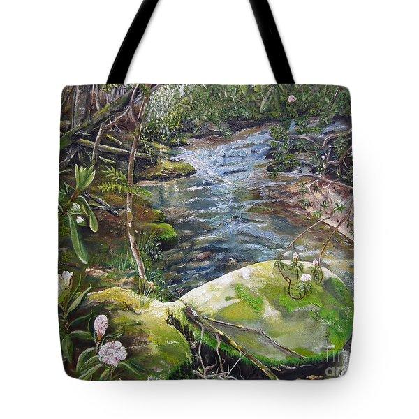 Creek -  Beyond The Rock - Mountaintown Creek  Tote Bag