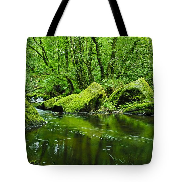 Creek In The Woods Tote Bag by Chevy Fleet