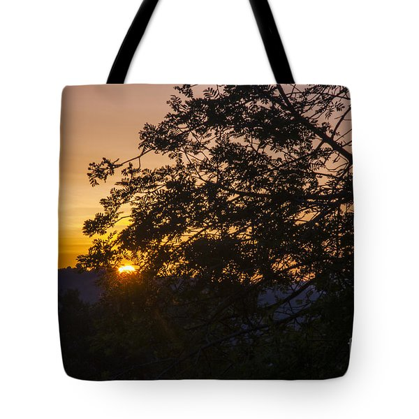 Creeping Over Tote Bag by Bob Phillips