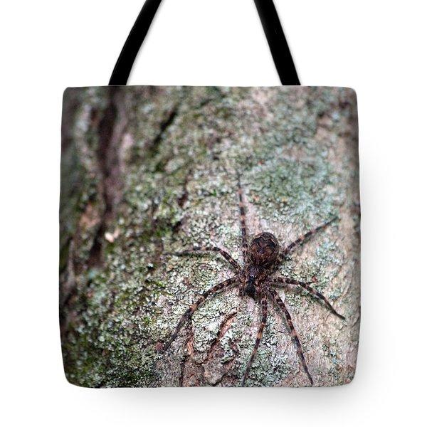 Creepy Spider Tote Bag by Karol Livote