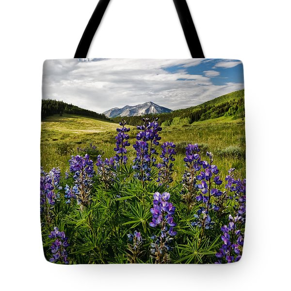Tote Bag featuring the photograph Crested Butte Lupines by Ronda Kimbrow