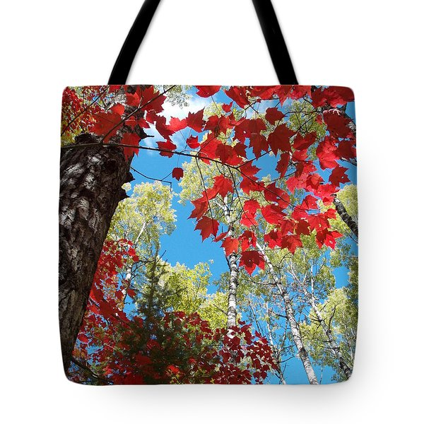 Tote Bag featuring the photograph Crimson Foliage by James Peterson