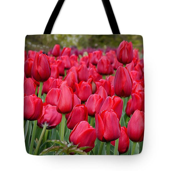 Crimson Tulips  Tote Bag by Richard Reeve
