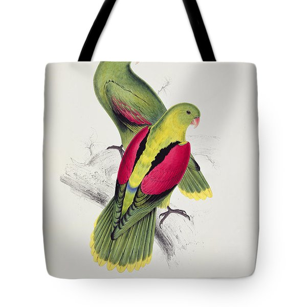 Crimson Winged Parakeet Tote Bag by Edward Lear