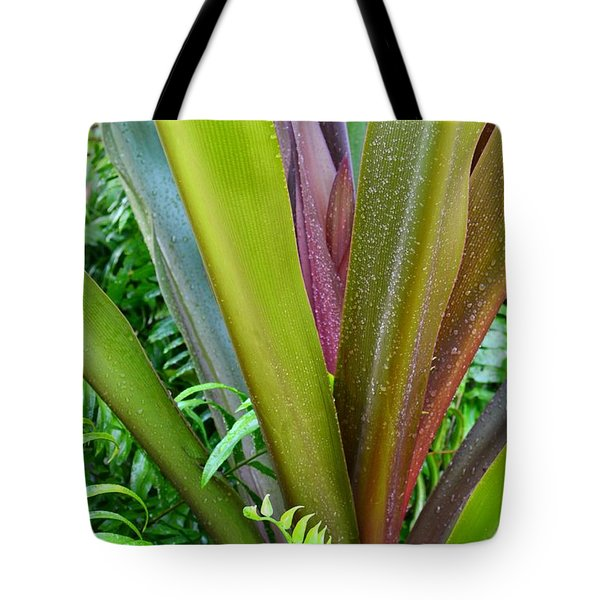 Tote Bag featuring the photograph Crinum Lily And Ferns by Darla Wood