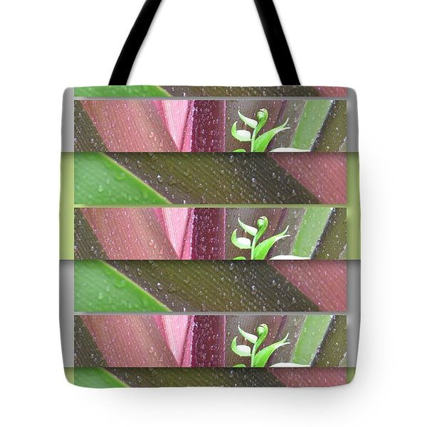 Tote Bag featuring the photograph Crinum Lily Collage3 by Darla Wood